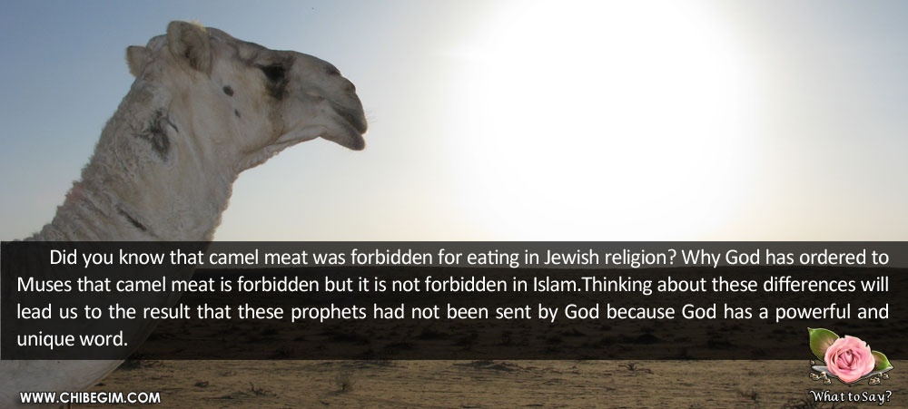 Did you know that camel meat was forbidden for eating in Jewish religion? Why God has ordered to Muses that camel meat is forbidden but it is not forbidden in Islam.Thinking about these differences will lead us to the result that these prophets had not been sent by God because God has a powerful and unique word.