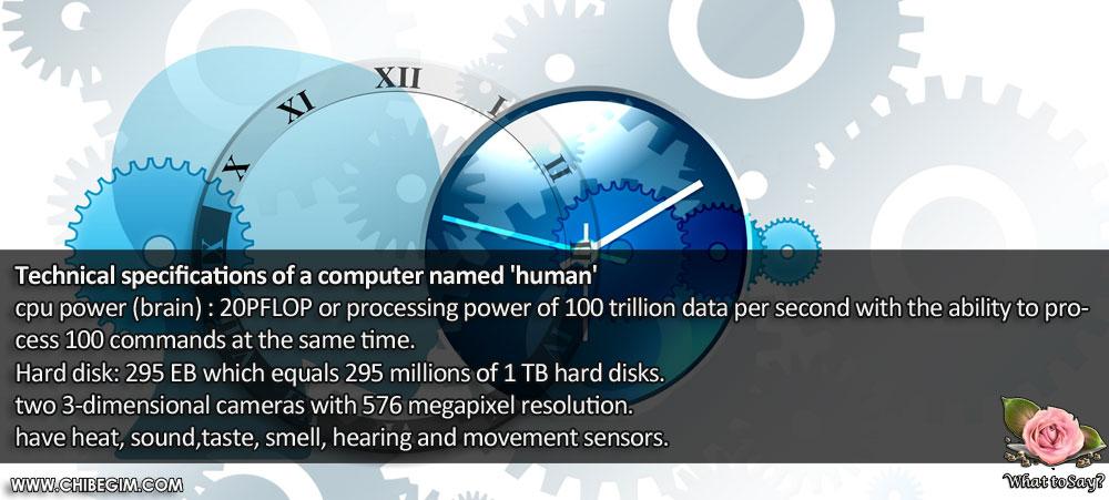 Technical specifications of a computer named 'human'  cpu power (brain) : 20PFLOP or processing power of 100 trillion data per second with the ability to process 100 commands at the same time. Hard disk: 295 EB which equals 295 millions of 1 TB hard disks. two 3-dimensional cameras with 576 megapixel resolution.  have heat, sound,taste, smell, hearing and movement sensors.